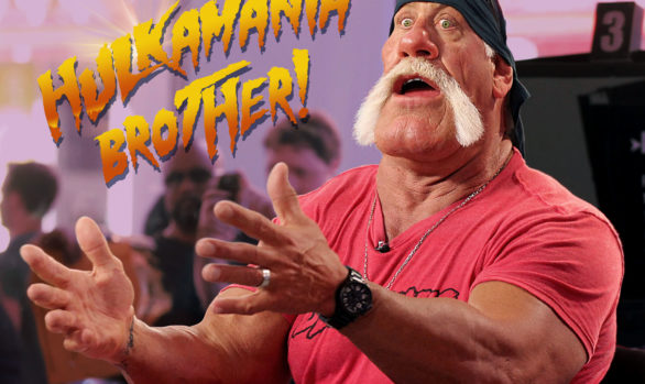 Hulk Hogan Brother